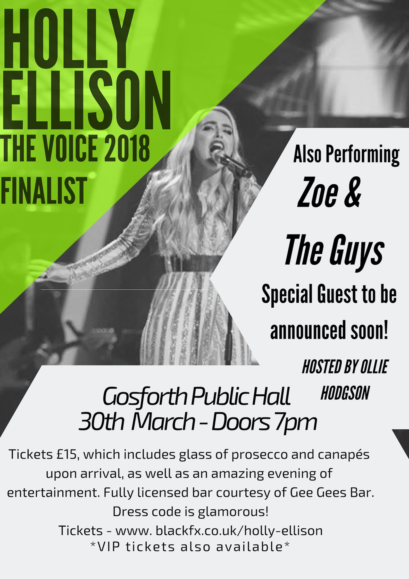 Holly Ellison Event Poster